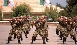 armee-algerienne