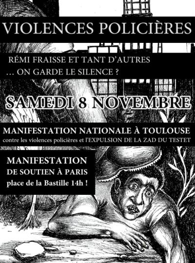 2014-11-08_Paris-Toulouse_manifsRemiFraisse-web-400x540