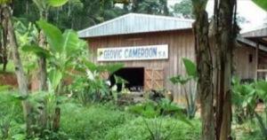 VILLAGE CAMEROUNAIS